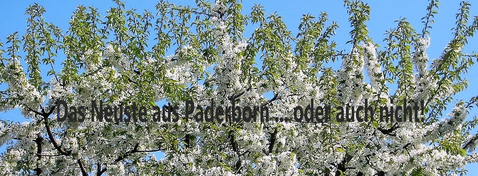 Webseite der Familie Koepe in Paderborn